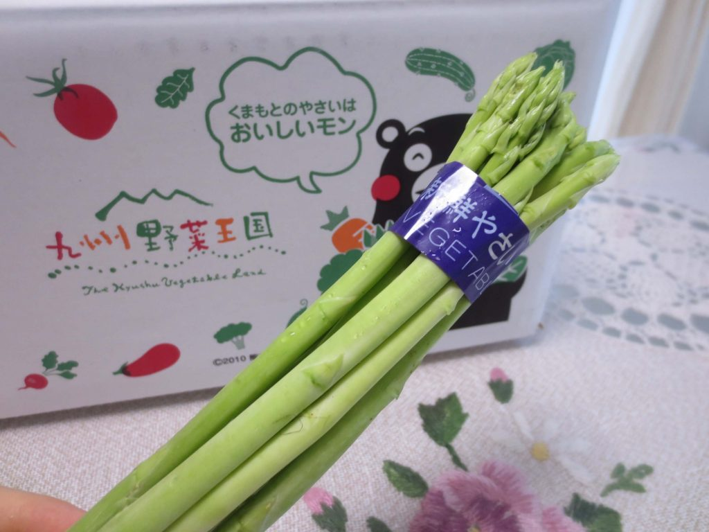 九州野菜王国の口コミ・比較ランキング・お試しセット体験談40