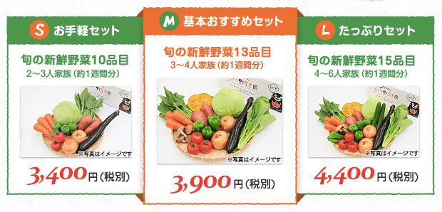 九州野菜王国の口コミ・比較ランキング・お試しセット体験談17