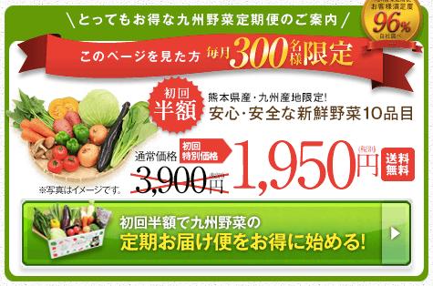 九州野菜王国の口コミ・比較ランキング・お試しセット体験談2
