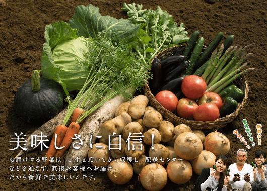 九州野菜王国の口コミ・比較ランキング・お試しセット体験談5