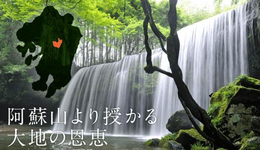 九州野菜王国の口コミ・比較ランキング・お試しセット体験談4