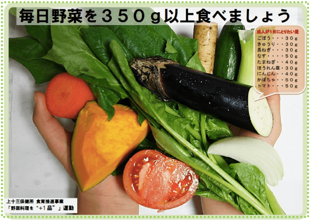 腸内環境・有機野菜の大切さ8