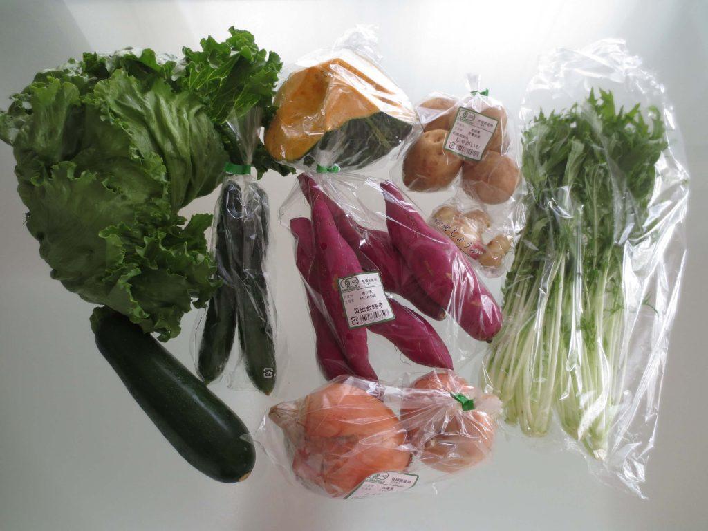 野菜宅配サービス比較ランキング・ビオマルシェの口コミ