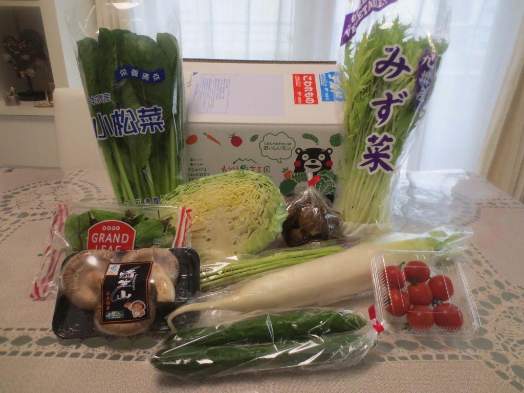 野菜宅配サービス比較ランキング・九州野菜王国の口コミ