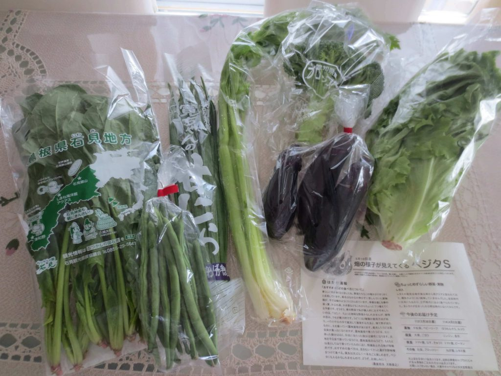 野菜宅配比較ランキング・大地を守る会の定期便「ベジタ」