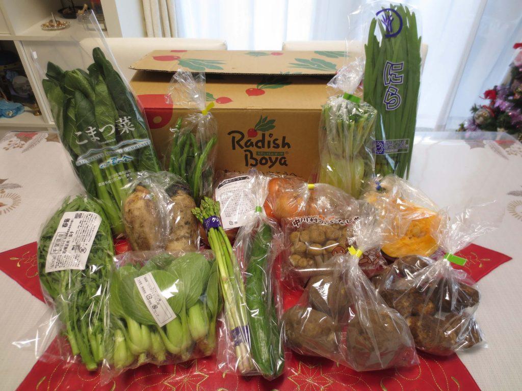 野菜宅配比較ランキング・らでぃっしゅぼーや・しきさいパレットの口コミ