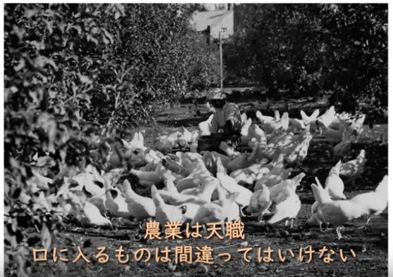 秋川牧園の講演会・安全な無農薬野菜・鶏肉・加工品が美味しい6