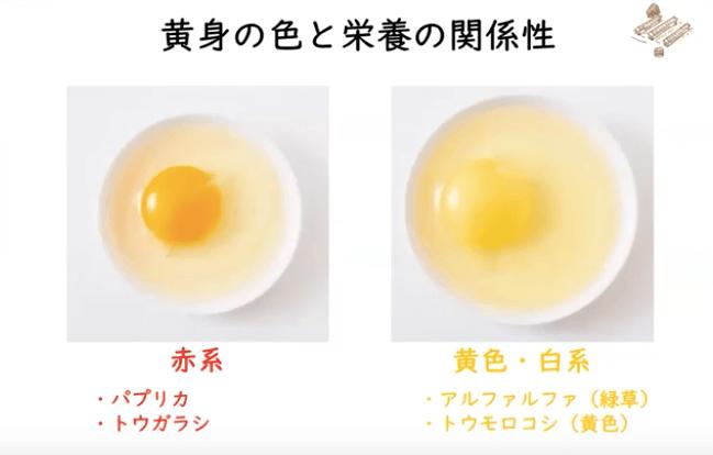 秋川牧園の講演会・安全な無農薬野菜・鶏肉・加工品が美味しい27