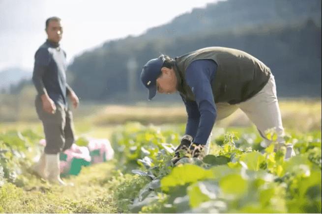秋川牧園の講演会・安全な無農薬野菜・鶏肉・加工品が美味しい35