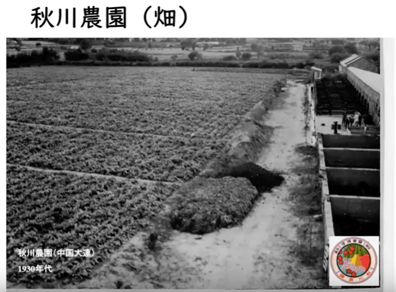 秋川牧園の講演会・安全な無農薬野菜・鶏肉・加工品が美味しい10