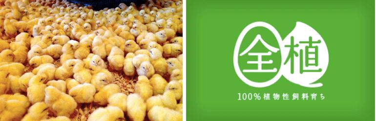 秋川牧園の定期便の口コミ・有機栽培・無農薬栽培野菜と冷凍食品(鶏肉)7
