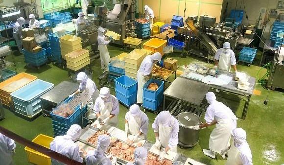 秋川牧園の定期便の口コミ・有機栽培・無農薬栽培野菜と冷凍食品(鶏肉)56