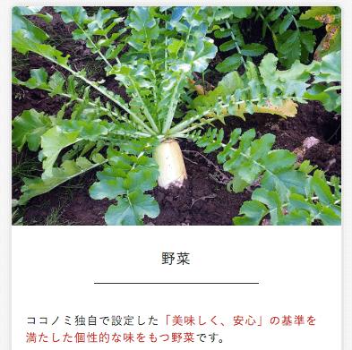 有機野菜・無農薬野菜宅配のココノミの定期便の口コミ111