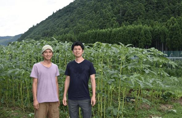 有機野菜・無農薬野菜宅配のココノミの定期便の口コミ20