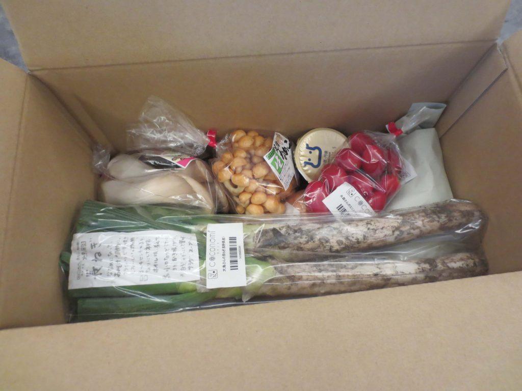 有機野菜・無農薬野菜宅配のココノミの定期便の口コミ29