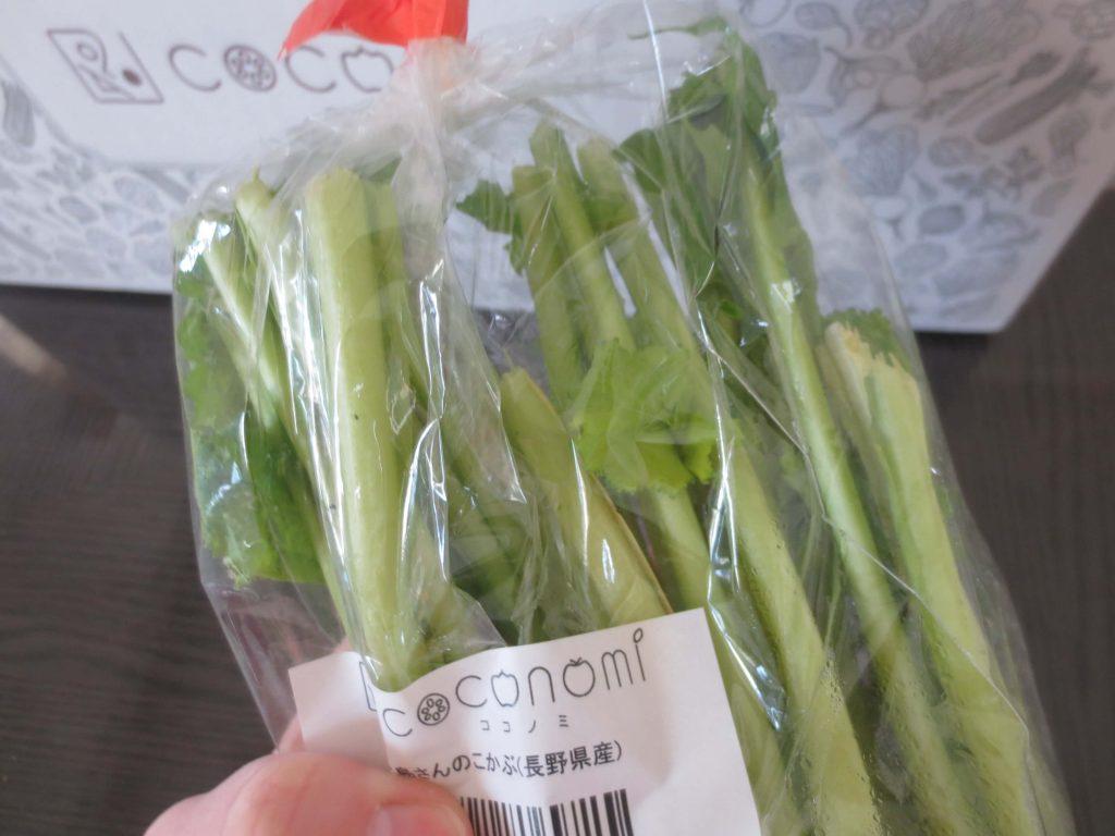 有機野菜・無農薬野菜宅配のココノミの定期便の口コミ53