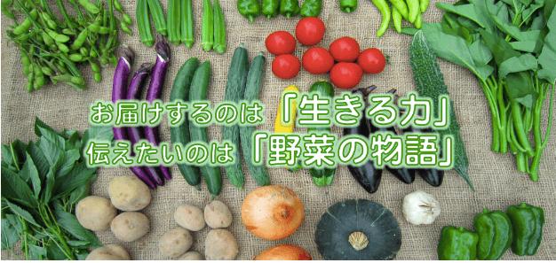 しあわせ野菜畑の口コミと評判34
