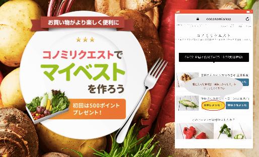 有機野菜・無農薬野菜宅配のココノミの定期便の口コミ18