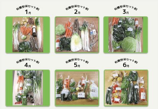 しあわせ野菜畑の口コミと評判57