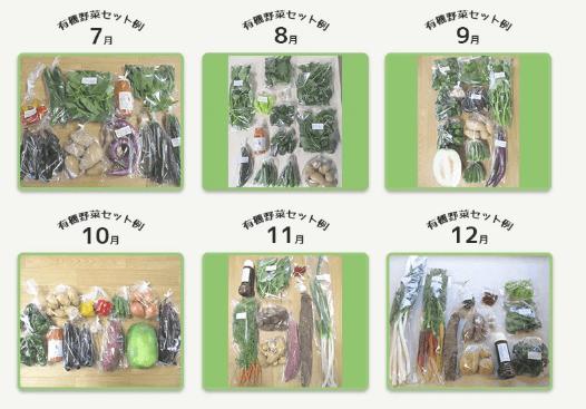 しあわせ野菜畑の口コミと評判58