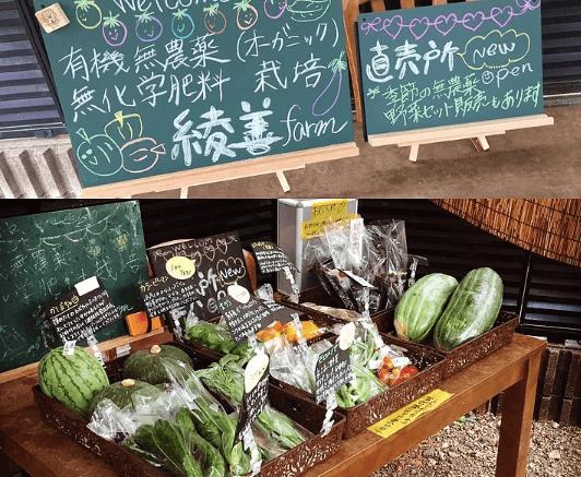 綾善(あやぜん)の無農薬野菜宅配の口コミと評判3