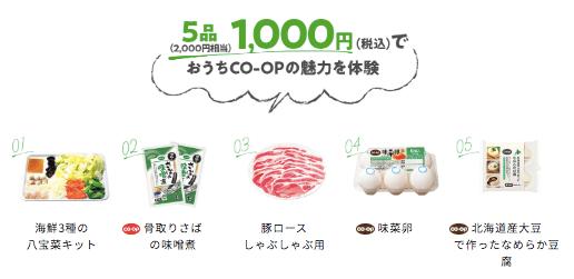 食材宅配のおうちコープの口コミと評判・ミールキットと赤ちゃん離乳食がおすすめ50