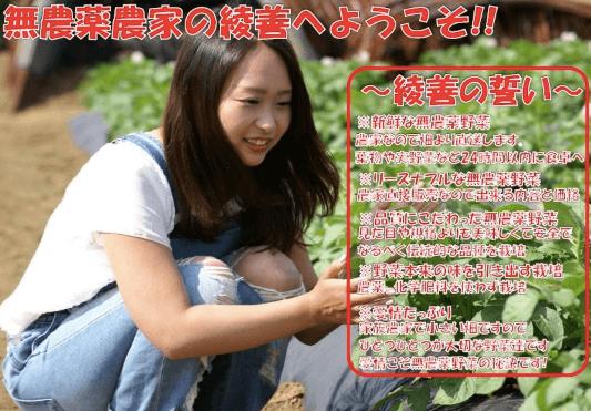 綾善(あやぜん)の無農薬野菜宅配の口コミと評判9