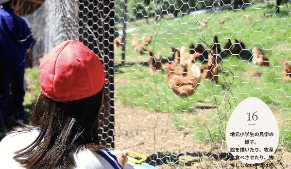 黒富士農場の平飼い卵リアルオーガニック卵の口コミ・評判12