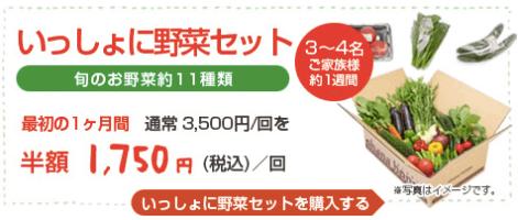 大分県の野菜宅配「ohana本舗」の有機野菜セットの口コミ・評判21
