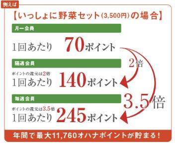 大分県の野菜宅配「ohana本舗」の有機野菜セットの口コミ・評判15