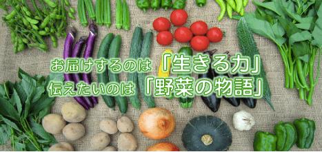 静岡県掛川市の有機野菜宅配しあわせ野菜畑の口コミ30