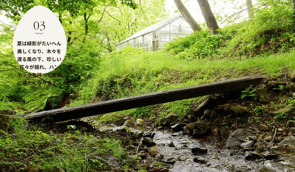 黒富士農場の平飼い卵リアルオーガニック卵の口コミ・評判7