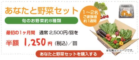 大分県の野菜宅配「ohana本舗」の有機野菜セットの口コミ・評判22
