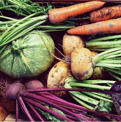 自然食材・有機食材のこだわりやの口コミ体験談・おすすめ食材評価10
