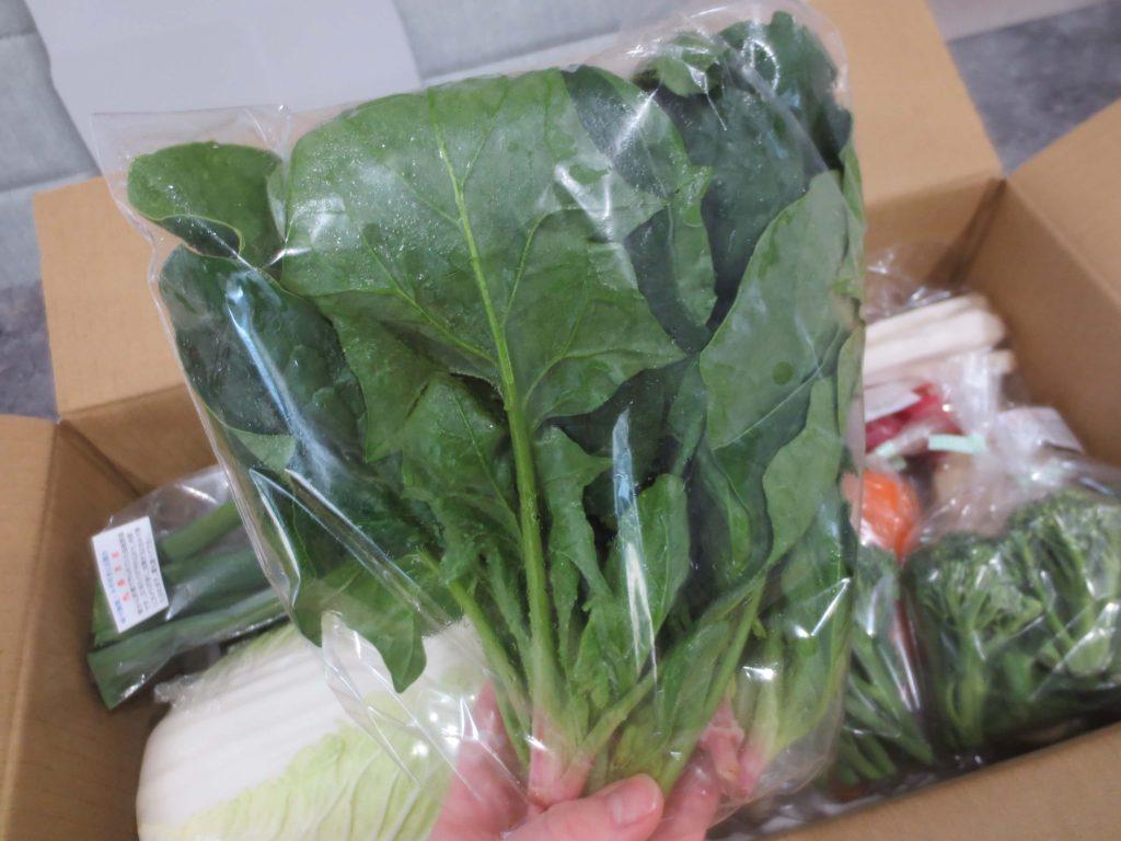 静岡県掛川市の有機野菜宅配しあわせ野菜畑の口コミ5
