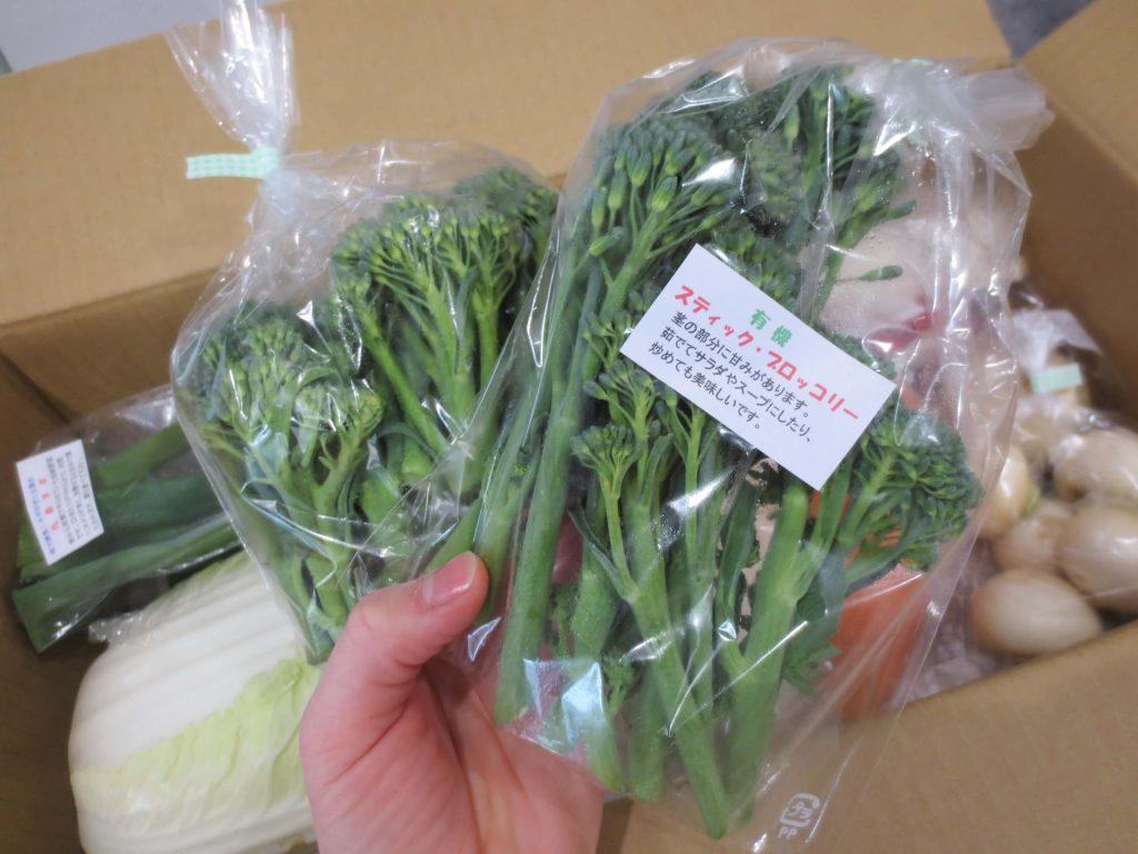 静岡県掛川市の有機野菜宅配しあわせ野菜畑の口コミ6
