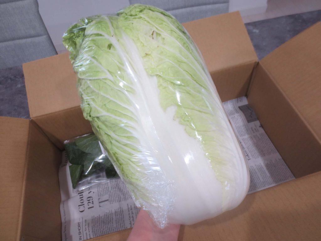 静岡県掛川市の有機野菜宅配しあわせ野菜畑の口コミ15