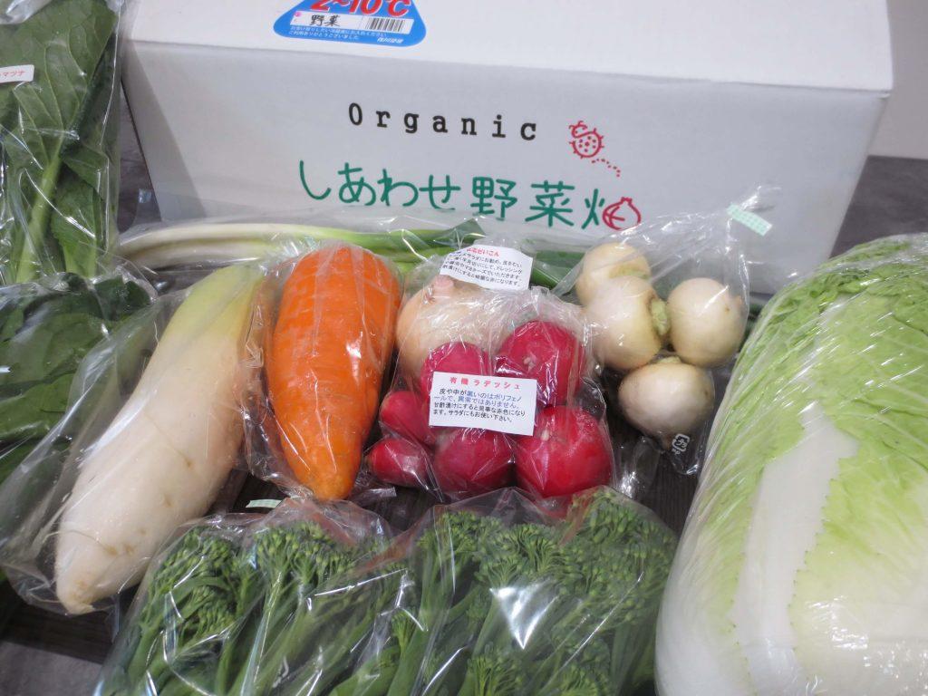 静岡県掛川市の有機野菜宅配しあわせ野菜畑の口コミ18