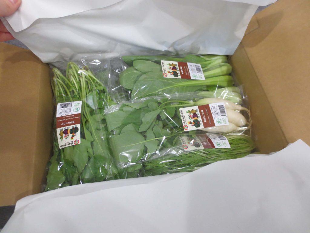 大分県の野菜宅配「ohana本舗」の有機野菜セットの口コミ・評判29