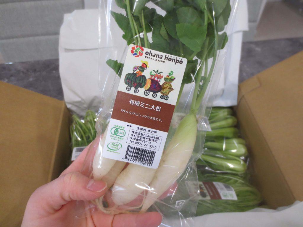 大分県の野菜宅配「ohana本舗」の有機野菜セットの口コミ・評判30