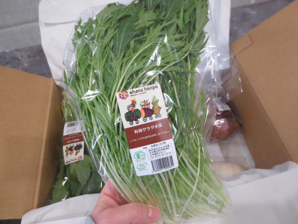 大分県の野菜宅配「ohana本舗」の有機野菜セットの口コミ・評判32