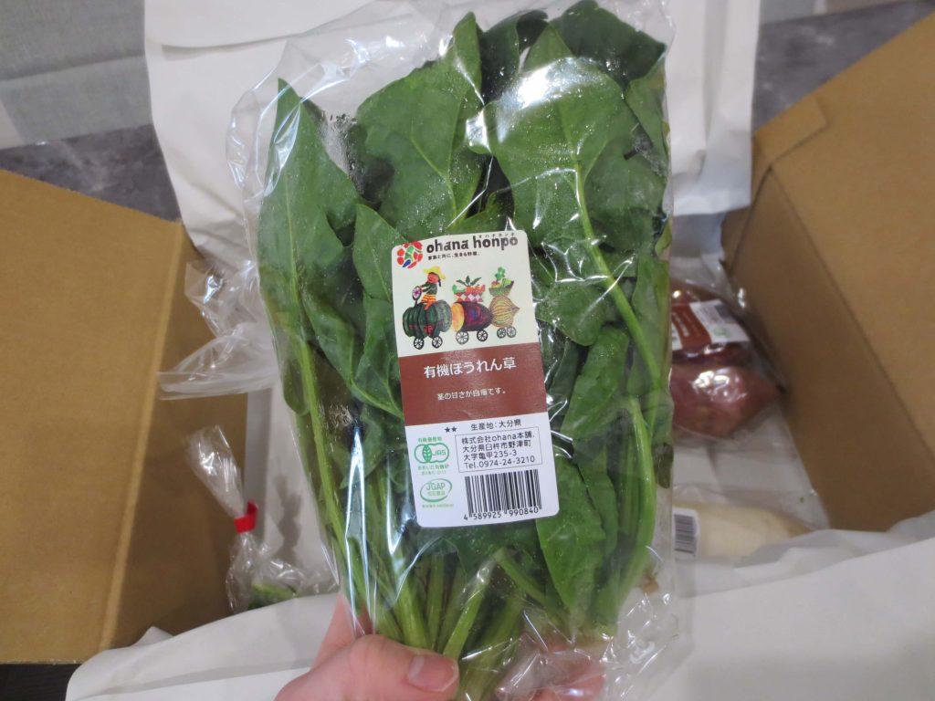 大分県の野菜宅配「ohana本舗」の有機野菜セットの口コミ・評判34
