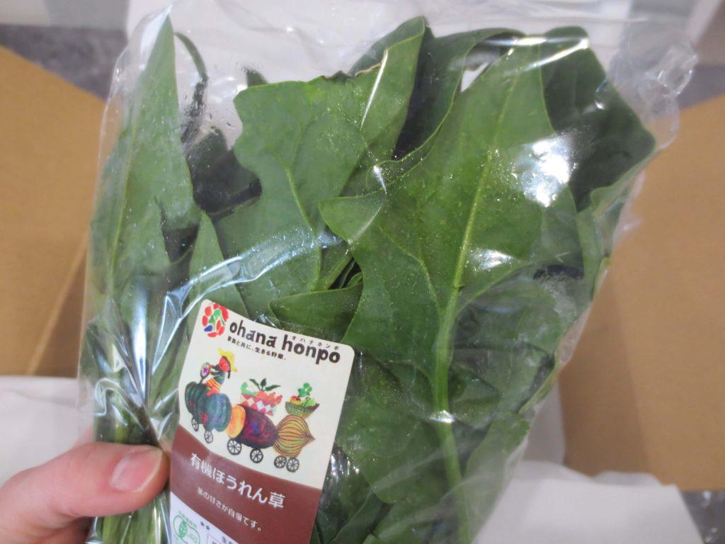 大分県の野菜宅配「ohana本舗」の有機野菜セットの口コミ・評判41