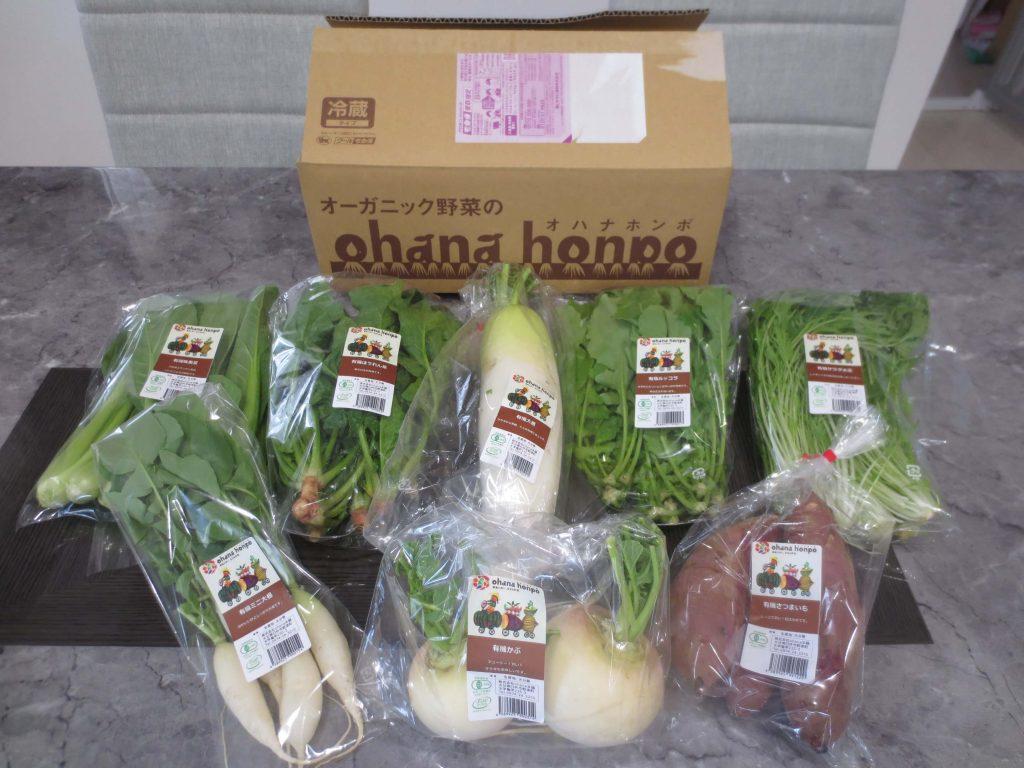 大分県の野菜宅配「ohana本舗」の有機野菜セットの口コミ・評判42
