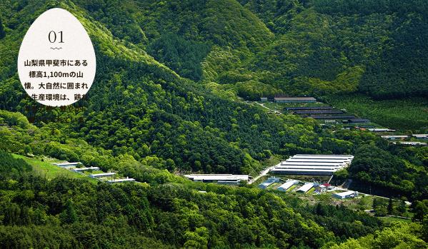 黒富士農場の平飼い卵リアルオーガニック卵の口コミ・評判5