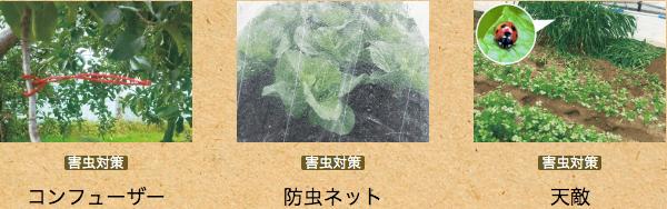 トップバリュ・オーガニックPB「グリーンアイ」13