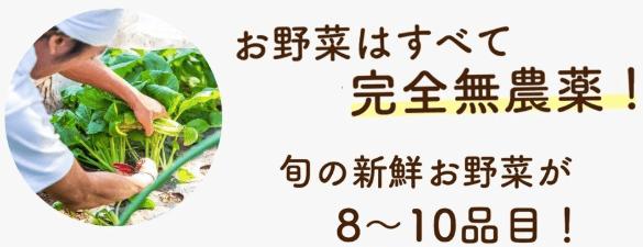 学習型無農薬野菜宅配manavegeマナベジの口コミと評判3