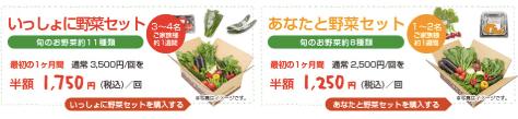 大分臼杵市の無農薬野菜ohana本舗の野菜セット27