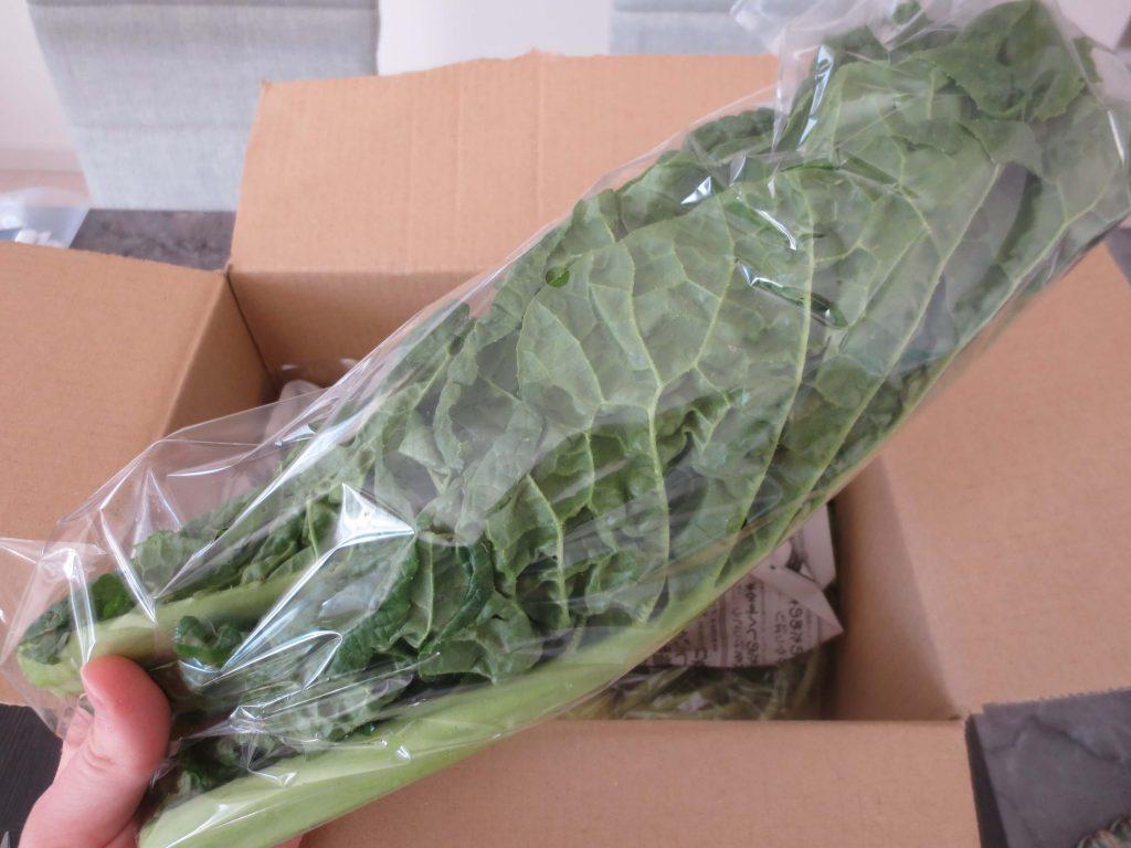 学習型無農薬野菜宅配manavegeマナベジの口コミと評判24