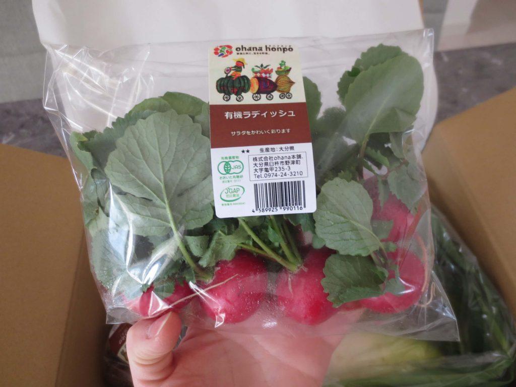 大分臼杵市の無農薬野菜ohana本舗の野菜セット7